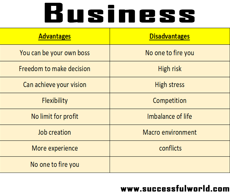 advantages and disadvantages of doing a business