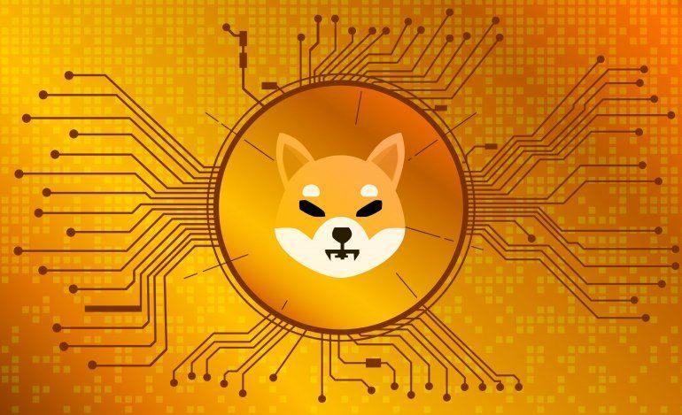 What is SHIB Coin and the Future of Cryptocurrency?